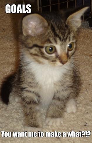 Goal Kitten