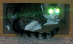 Zak fighting aliens with his laser eyes.
